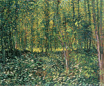Trees and Undergrowth, 1887 von Vincent Van Gogh