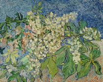Blossoming Chestnut Branches von Vincent Van Gogh