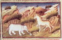 Ms Fr 2810 f.59v, Mythical animals in the wilderness von Boucicaut Master
