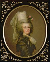 Archduchess Marie Antoinette Habsburg-Lothringen von Adolf Ulrich Wertmuller