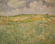 The Plain at Auvers, 1890 von Vincent Van Gogh