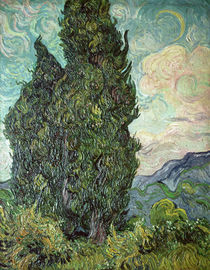 Cypresses, 1889 by Vincent Van Gogh