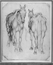 Two horses, from the The Vallardi Album by Antonio Pisanello