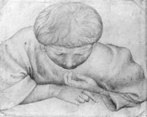 Boy reading, from the The Vallardi Album von Antonio Pisanello