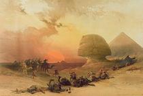 The Sphinx at Giza von David Roberts