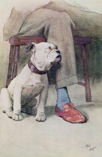Bulldog von Cecil Charles Windsor Aldin