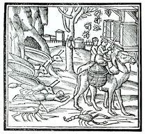 Representation of the Plague von English School