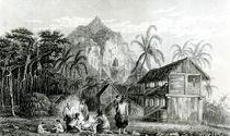 Interior of Pitcairn Island von William Beechey