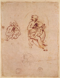 Study for the Virgin and Child von Leonardo Da Vinci