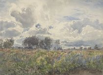 Showery June, Picardy, c.1870 von Henry Moore