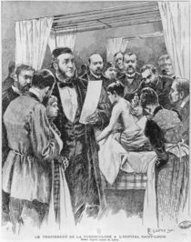 The treatment of tuberculosis at St. Louis hospital von Edward Loevy