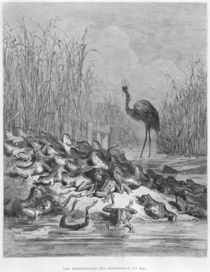 The frogs asking for a king by Gustave Dore