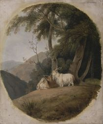 Kashmir Goats, c.1780-1820 by William Daniell