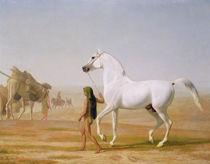 The Wellesley Grey Arabian led through the Desert von Jacques Laurent Agasse