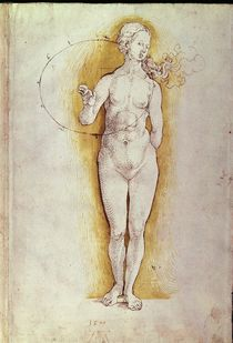 Female nude von Albrecht Dürer