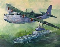 Short Sunderland over liberty ship von Geoff Amos