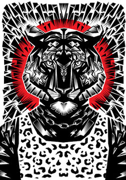 Tiger-gr