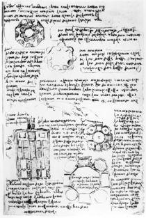 Design for a palace and park by Leonardo Da Vinci