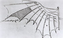 M S B 2173 fol. 74r Studies of wing articulation by Leonardo Da Vinci