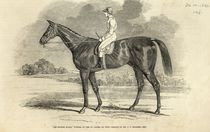 'Sir Tatton Sykes', Winner of the St. Leger by John Frederick Herring Snr
