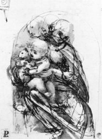 Study for a Madonna with a Cat von Leonardo Da Vinci