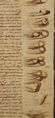 Scientific diagrams, from the 'Codex Leicester' von Leonardo Da Vinci