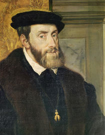 Detail of Seated Portrait of Emperor Charles V 1548 by Titian