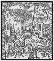 November, killing the pig and harvesting acorns von Pierre Le Rouge