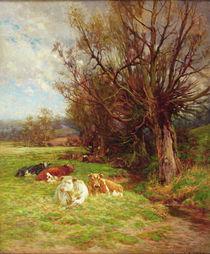 Cattle grazing von Charles James Adams