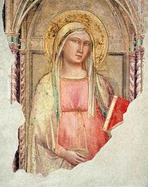 Madonna del Parto by Taddeo Gaddi