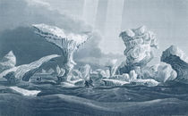 Boats in a Swell Amongst Ice von George Back