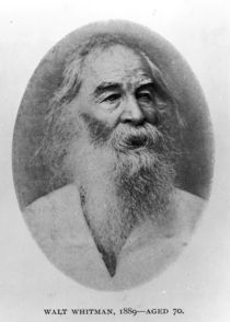 Walt Whitman, photographed in 1889 by American Photographer