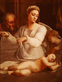 Madonna of the Veil, c.1533-35 by Sebastiano del Piombo