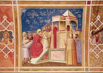 The Presentation of the Virgin at the Temple von Giotto di Bondone