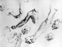 Studies for the arm of Adam by Albrecht Dürer
