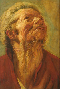 Study of a Head, or Head of an Apostle by Jacob Jordaens