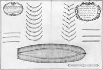 Plan of a vessel with all its floor plates and forks by French School