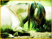 Dösendes Pferd by Sandra  Vollmann