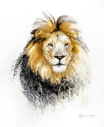 Lion 1 von Andre Olwage