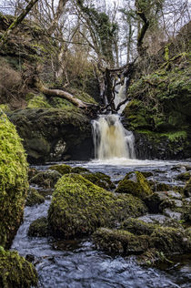 Waterfall on the River Chracaig, at Scorrybreac, Portree, Isle of Skye von Bruce Parker