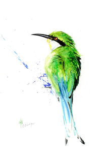 Swallow Tailed Bee Eater by Andre Olwage