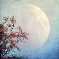 Nachtgedanken von Andreas Hoops
