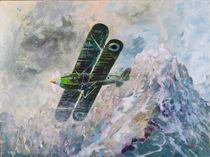 Hawker Fury biplane by Geoff Amos