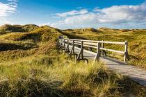 Landschaft in den Dünen auf der Insel Amrum von Rico Ködder