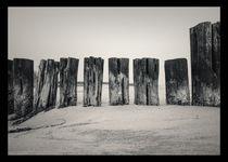 Holz am Strand by Andreas Plöger