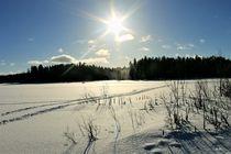 Winterlight von Heidi Piirto