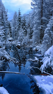 Frozen von Tomas Gregor