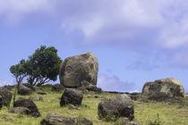 Orongo - Rapa Nui von sasto