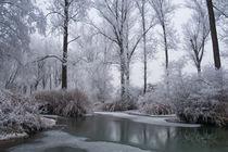 märchenhafte Winterlandschaft von Karin Stein