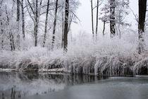 zauberhafte Winterwelt von Karin Stein